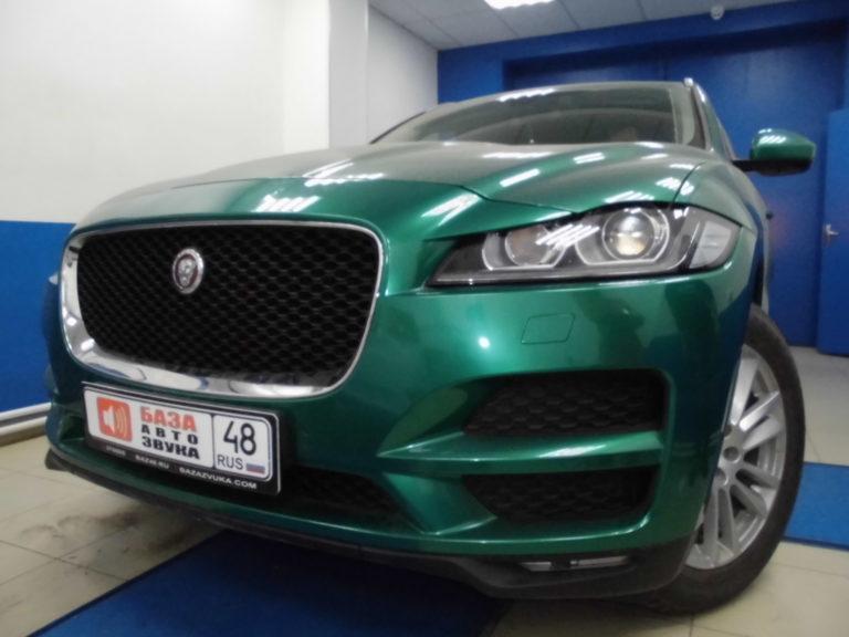 Jaguar F-Pace 2017 Защитная сетка радиатора